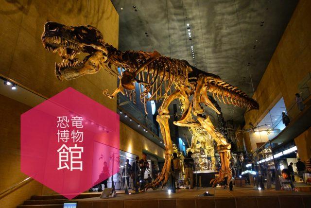 雨でも楽しめる西日本最大級の恐竜博物館